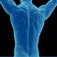 Muskelschmerzen - was ist das genau und was hilft gegen..